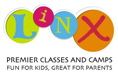 Welcome The LINX Companies